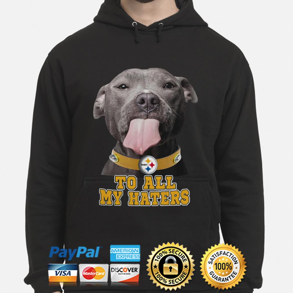 Pitbull Pittsburgh Steelers to all my haters hoodie