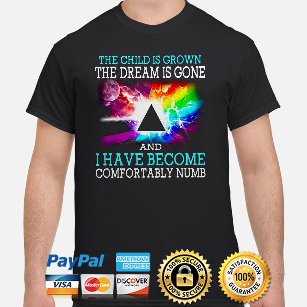 Pink Floyd The child is grown the dream is gone and I have become comfortably numb shirt